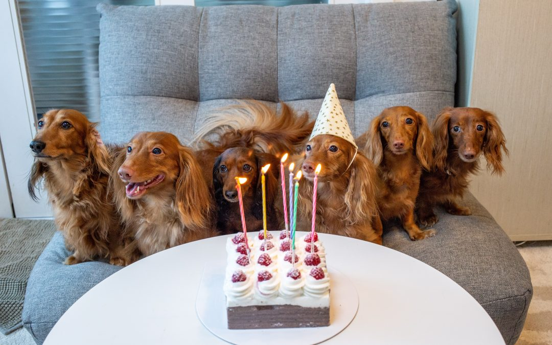 Never Forget Another Birthday: My Secret Strategy Revealed